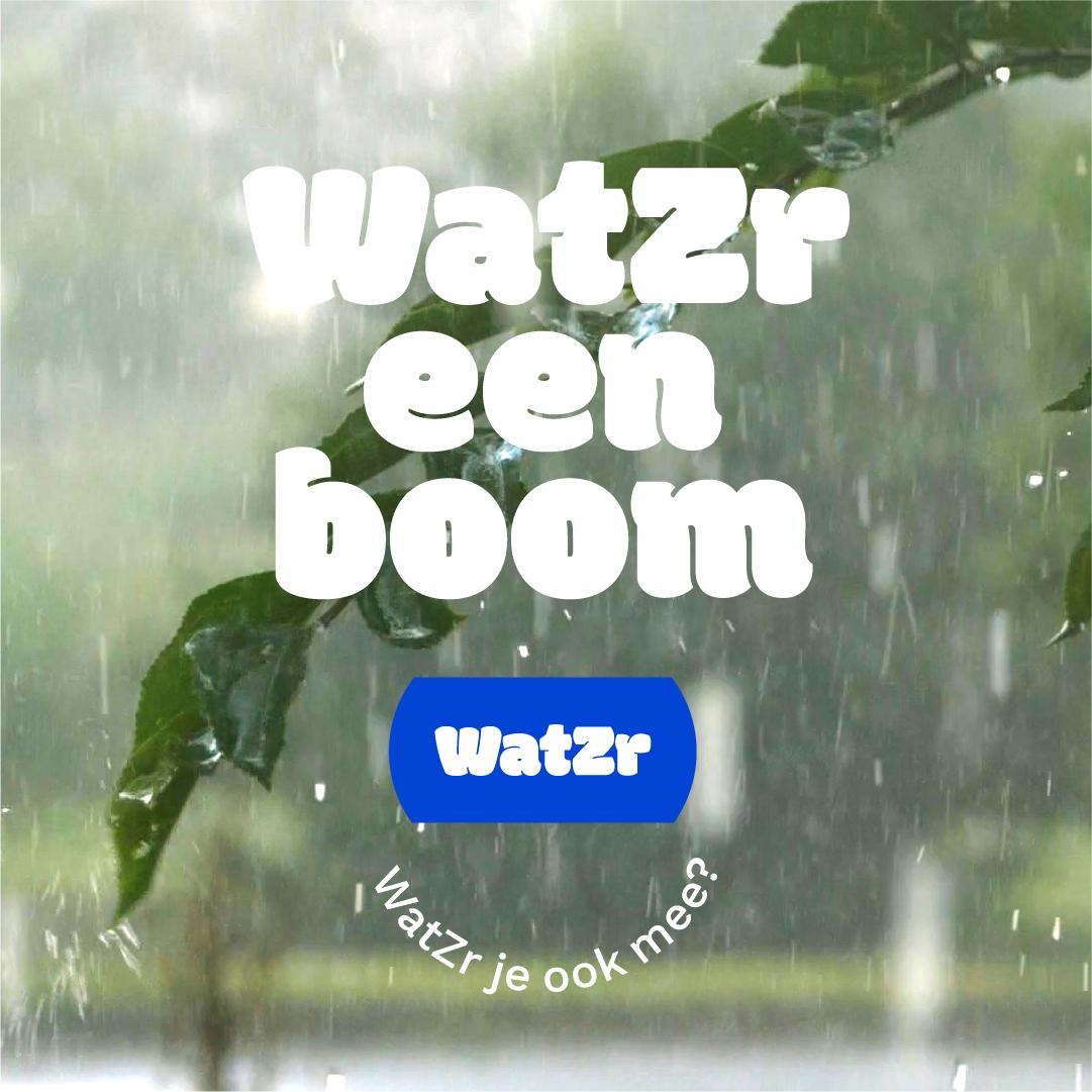 Boom-wateroverlast
