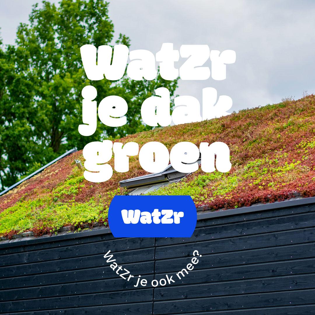 WatZr-je-dak-groen