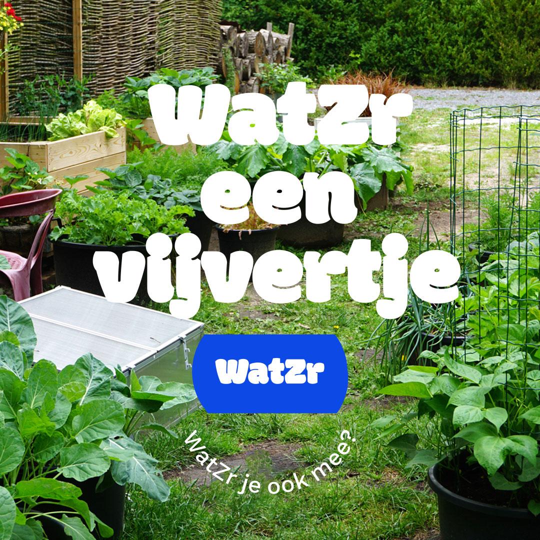wtazr-een-vijvertje